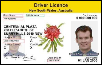 Getting Licence Back After Disqualification - NSW